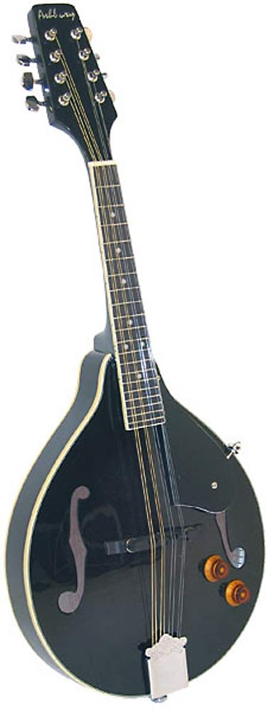 Ashbury AM-10 A Style Electro Mandolin, Black