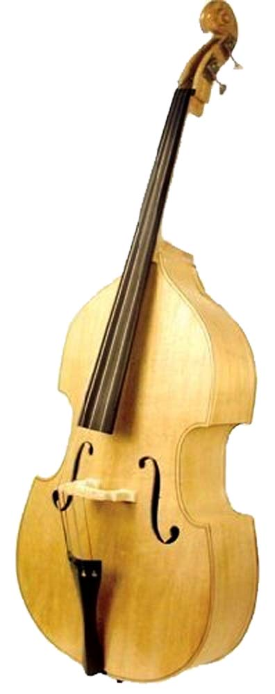 Stentor Harlequin Double Bass