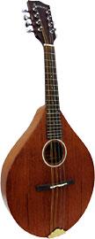 Ashbury AM-130 A Style Mandolin, Solid Sapele