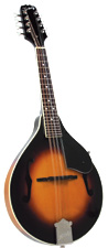 Arch Top A-Style Mandolins