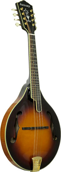 Ashbury AM-510 A Style Bluegrass Mandolin