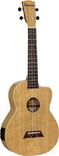 Ashbury AU-40 Tenor Ukulele, Electro Acoustic