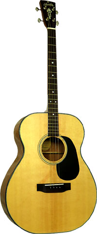 Blueridge BR-40T Contemporary Tenor Guitar CGDA