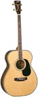 Blueridge BR-70T Contemporary Tenor Guitar CGDA