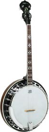 Ashbury AB-45 Tenor Banjo, Brass Tone Ring