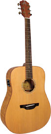 Ashbury AG-44 Dreadnought Guitar, Electro