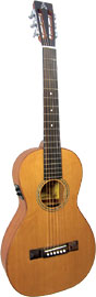 Ashbury AG-45 Parlour Guitar, Electro