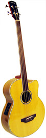 Ashbury AGB-40 Electro Acoustic Fretless Bass