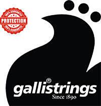 Galli PW040 Phosphor bronze ball end .040