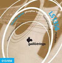 Galli LS1356 Guitar Set, Medium, Phos Bronze