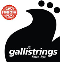 Galli LS1659 Resophonic Guitar Set.G Tuning