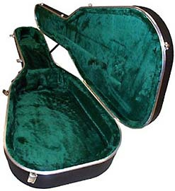 Hiscox Standard acoustic case